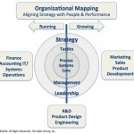 OrganizationalMapping_28120